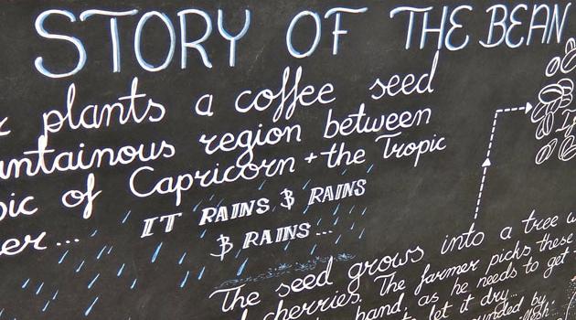 Third Wave Coffee Safari